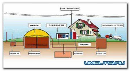 Биогаз на даче или на ферме