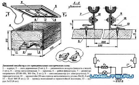 Домашний инкубатор