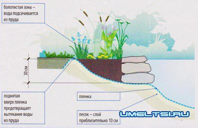 Пруд своими руками. Как избежать ошибок при создании водоема?
