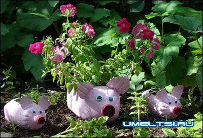 цветочник-свиньи из бутылок