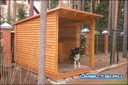 вольер для собак- примеры