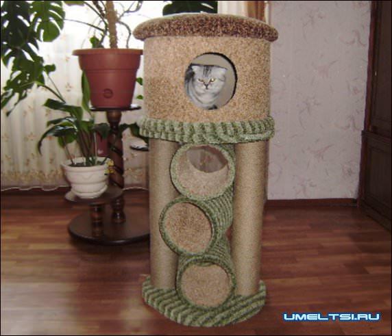 Чертеж комплекса для кота