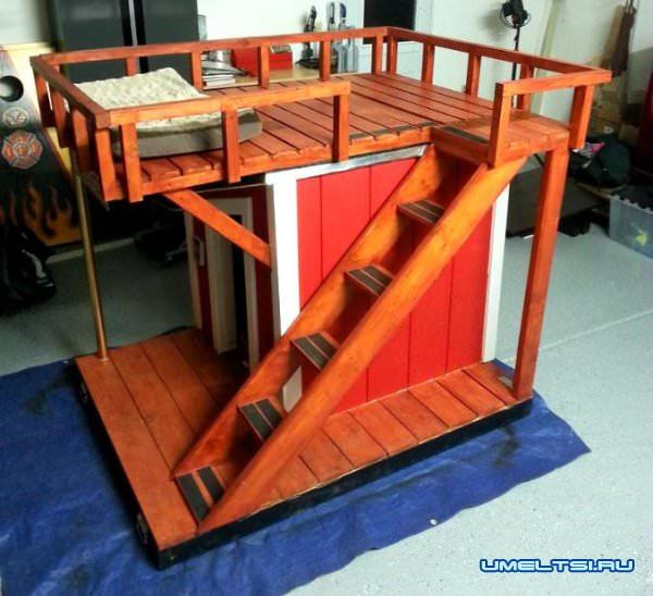 будку для собак с выгулом на крыше обработали лазурью