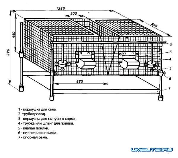 Клетка для кроликов из сетки - чертежи