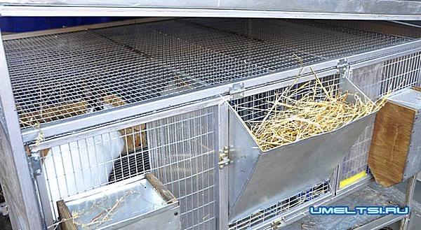 Готовые клетки из сетки для кроликов