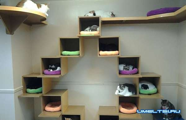 Дом для кошки своими руками-фото