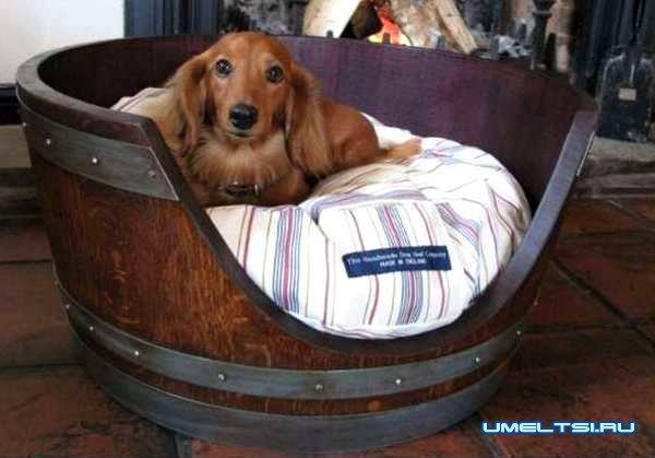 Кровать для собаки-фото