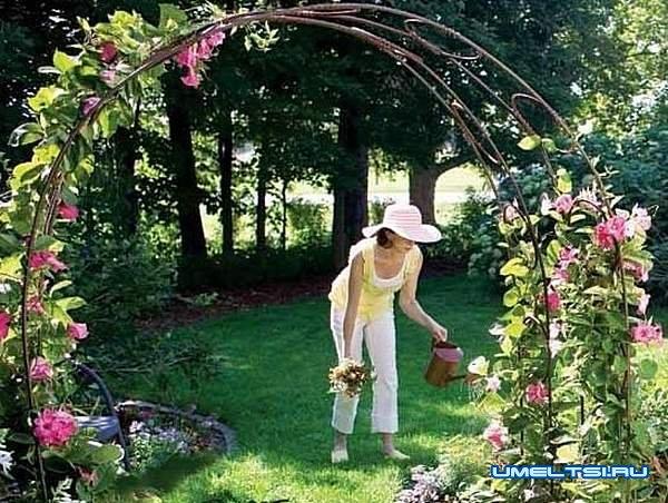 Арка для плетистой розы своими руками