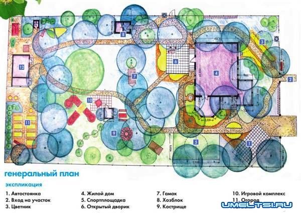 Грамотная планировка и разумный декор дачного участка