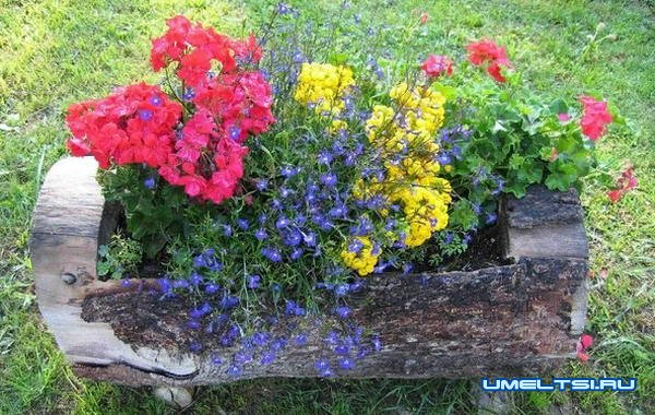 Цветники на даче: идеи высадки цветов