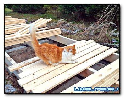 Деревянные дорожки на даче: недорого, технологично и практично