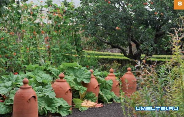 Огородные  лайфхаки