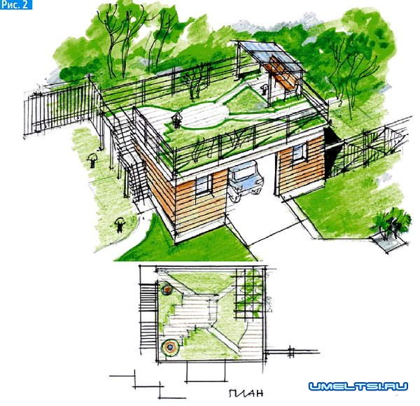 Как организовать сад на крыше