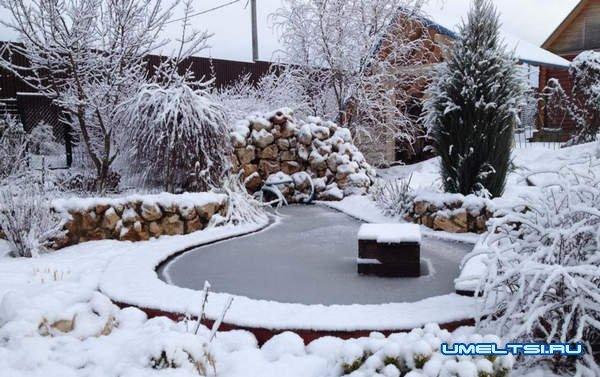 Дачный пруд: как ухаживать зимой