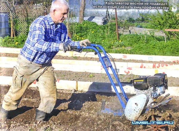 Как подготовить садовый инструмент